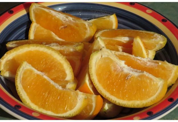 Frozen Orange Wedges